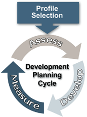 Competency Development Framework and Planning Cycle