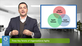 Three Key Tenets of Organizational Agility, Michael Delis, CEG